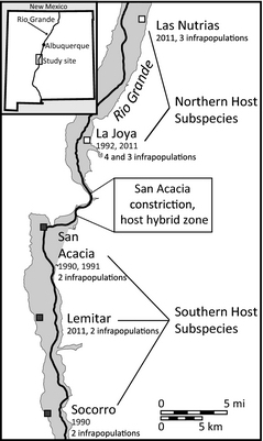 Fig. 2. Number of G. aurei populations sampled (n = number of host individuals) along the Rio Grande Valley of New Mexico with past and predicted future locations of the wave front of population expansion. 2012 samples were used for genomic work.
